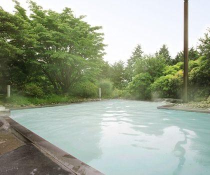 箱根湯の花温泉ホテル