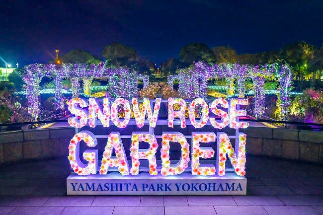 SNOW ROSE GARDEN YOKOHAMA Directed by NAKED イルミイメージ