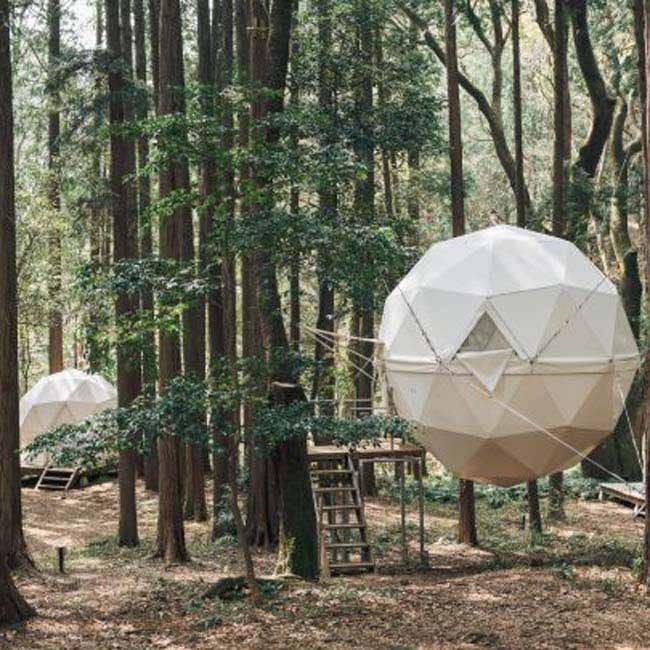 【自然泊ができる驚き宿3選】無人駅や宙に浮かぶテント、キリンと一緒に朝食も!?