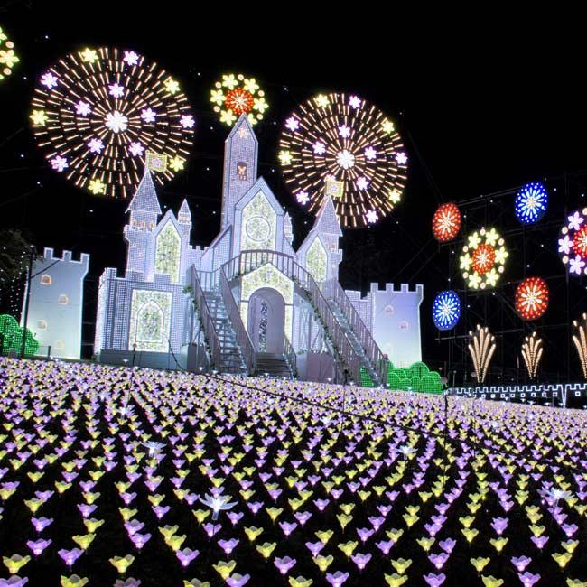 500万球の光が彩る!あしかがフラワーパークで東日本最大級のイルミネーションを体験【イルミネーション2019】