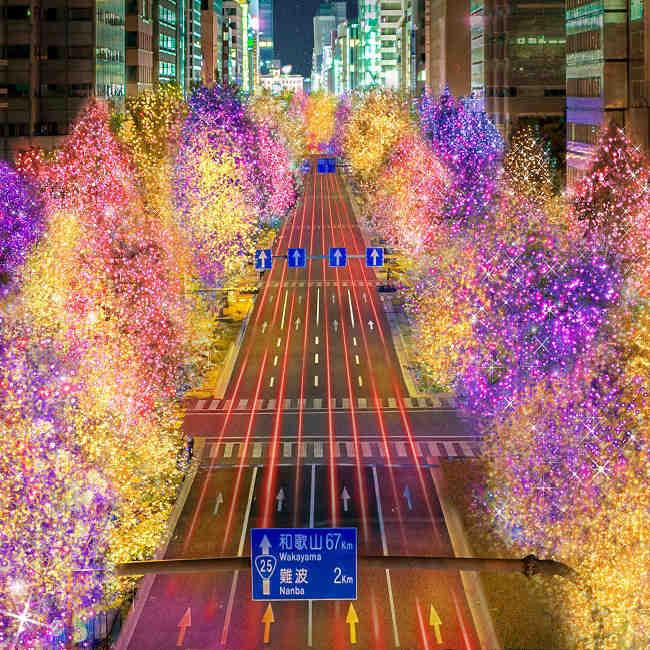 御堂筋も中之島も!大阪の夜が光に彩られる「大阪・光の饗宴2019」が開催【イルミネーション2019】