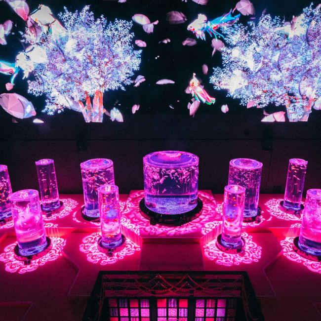 桜にちなんだ金魚や限定メニューも!日本橋のアートアクアリウム美術館で春の特別企画「桜金魚 舞い泳ぐ」