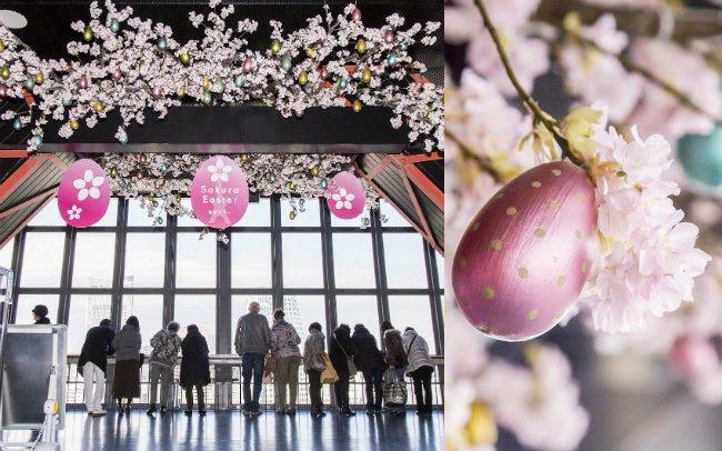 333個のかわいらしいエッグと桜で春の訪れをお祝い