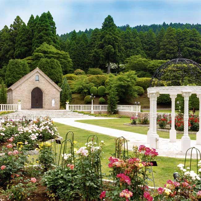 秋バラは朝がもっとも美しい。美食と温泉とバラ咲くガーデンが魅力のリゾートステイ3選