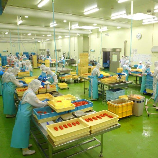 【大人の工場見学】できたて明太子の試食や直売店、フードコーナーも!茨城県「めんたいパーク大洗」