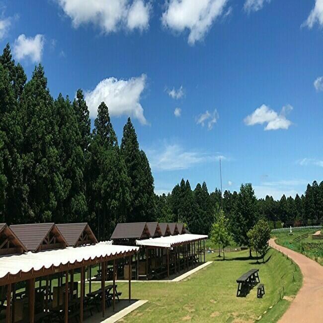 BBQの後は天然温泉を堪能!大自然に囲まれた農園リゾートで、手ぶらBBQと森遊びを楽しむ。千葉県香取市「THE FARM」