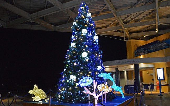新江ノ島水族館にクラゲのツリーが登場
