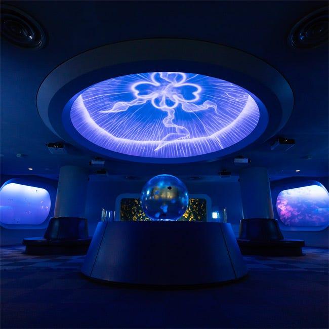 【水族館】目の前に広がる海!江の島を望むロケーションにあるクラゲ展示のパイオニア「新江ノ島水族館」
