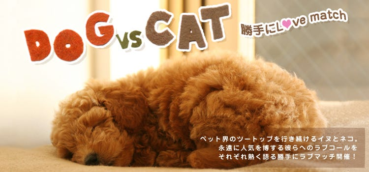 DOG vs CAT 勝手にLove match