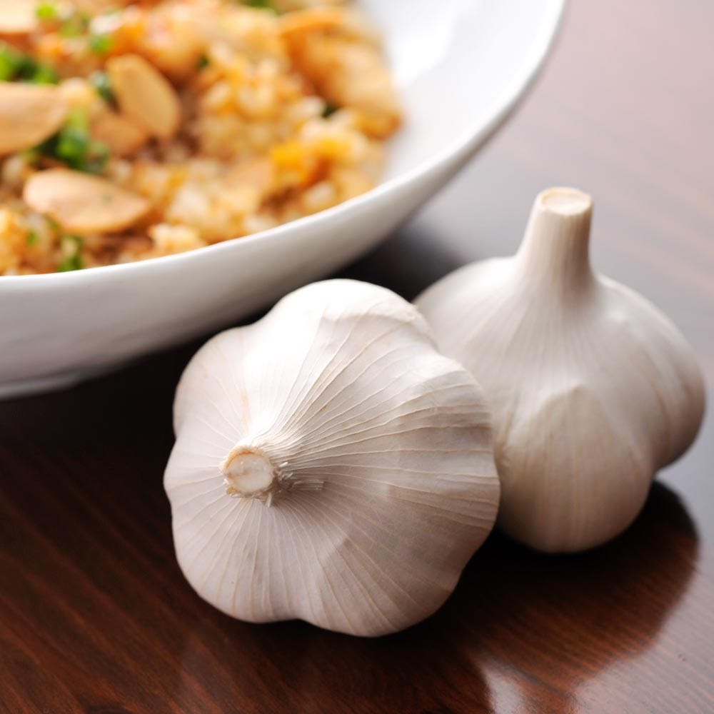 Garlic×Garlic Kitchen/おいしいコース