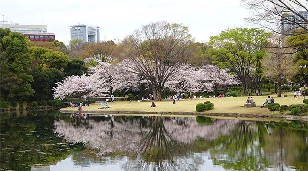 【東京・九段下】北の丸公園