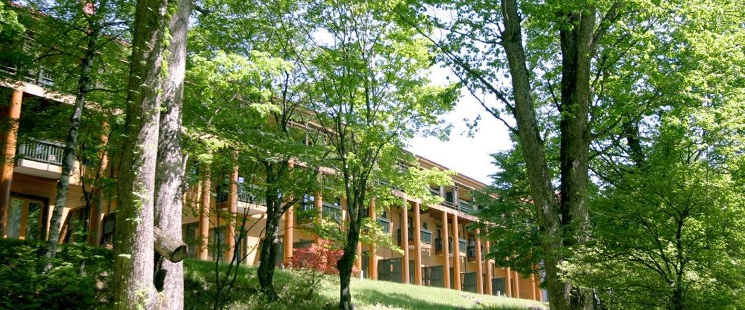 「中禅寺湖 金谷ホテル」の画像検索結果